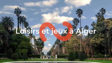 """إطلاق تطبيق لخدمة """"نباتو"""" لأول مرة في الجزائر"""